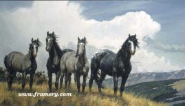 "AMAZING GRAYS IV by Nancy Glazier Image size 20"" X 35"" In stock and available Current price $185"